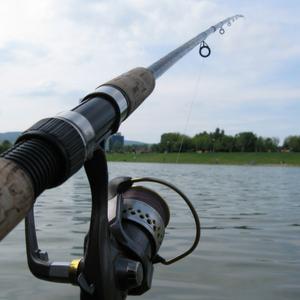 License Free Saltwater Fishing St Pete